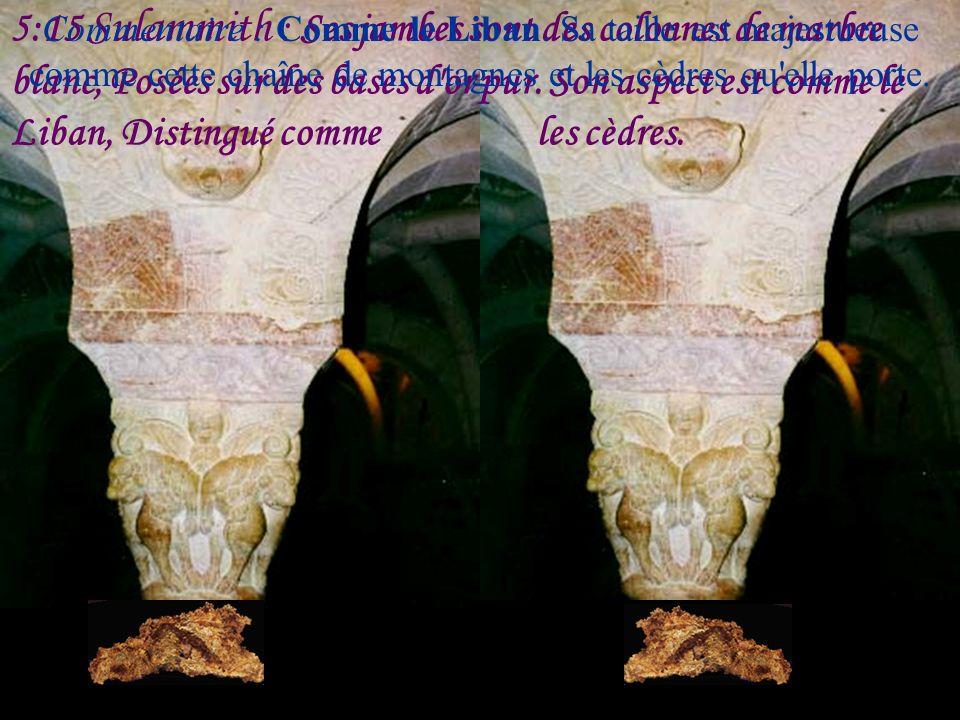 5:14 Sulammith : Ses mains sont des anneaux d'or, Garnis de chrysolithes; Son corps est de l'ivoire poli, Couvert de saphirs;