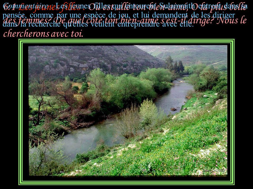 5:16 Sulammith : Son palais n'est que douceur, Et toute sa personne est pleine de charme. Tel est mon bien-aimé, tel est mon ami, Filles de Jérusalem!