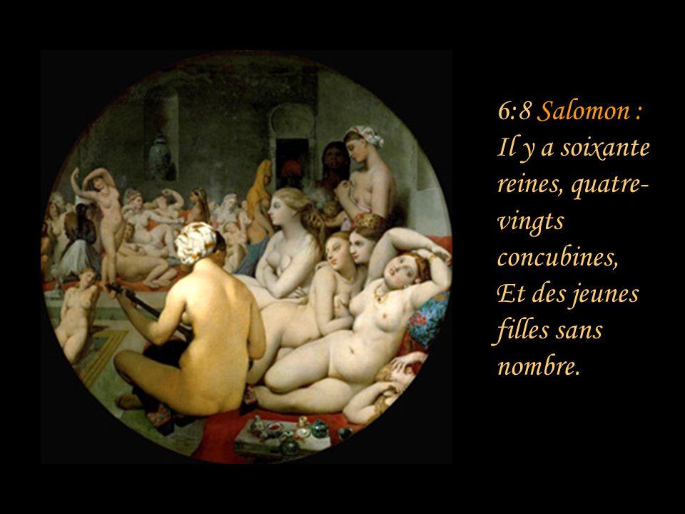 6:7 Salomon : Ta joue est comme une moitié de grenade, Derrière ton voile... Commentaire : La beauté du teint de Sulammith brille même à travers son v