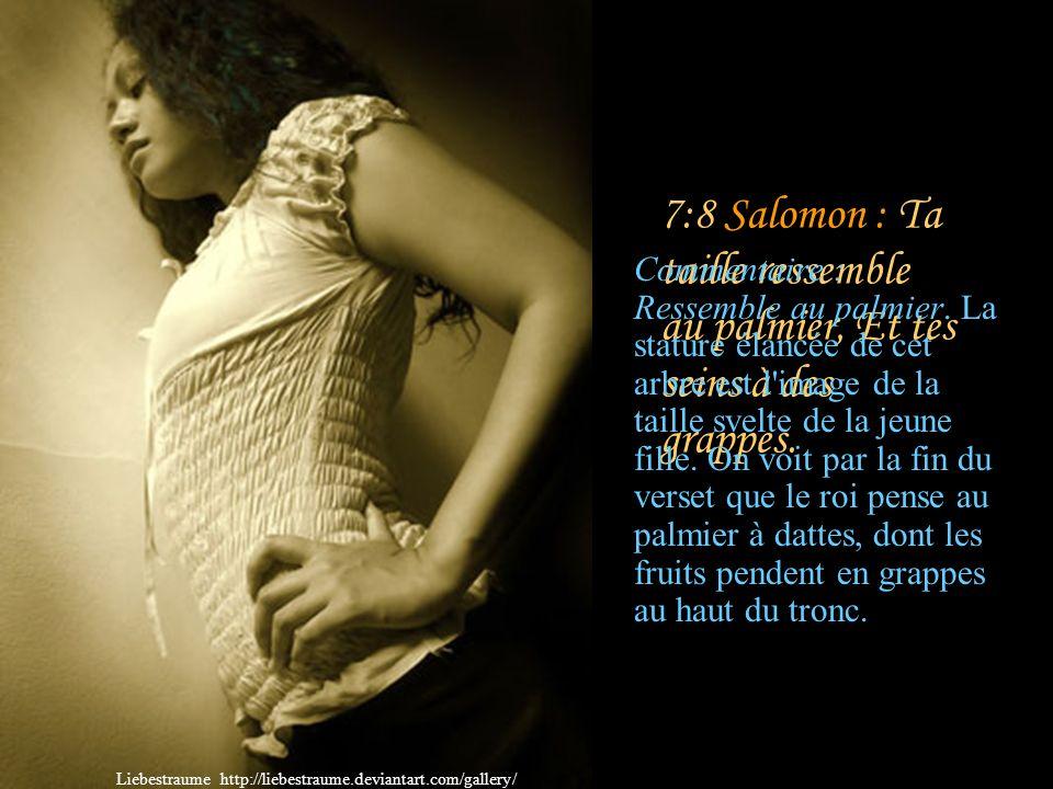 7:7 Salomon : Que tu es belle, que tu es agréable, O mon amour, au milieu des délices! Commentaire : C'est Salomon qui reprend la parole et qui, dans