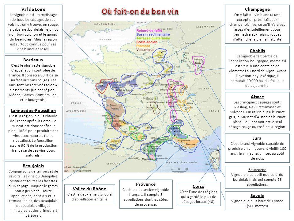 Les cailloux (on les appelle galets à Châteauneuf-du-Pape, graves dans le Médoc, perrières en Bourgogne) stockent la chaleur et réfléchissent la lumiè