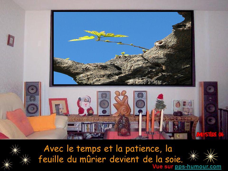 Le bavardage est l'écume de l'eau, l'action est une goutte d'or. Vue sur pps-humour.compps-humour.com
