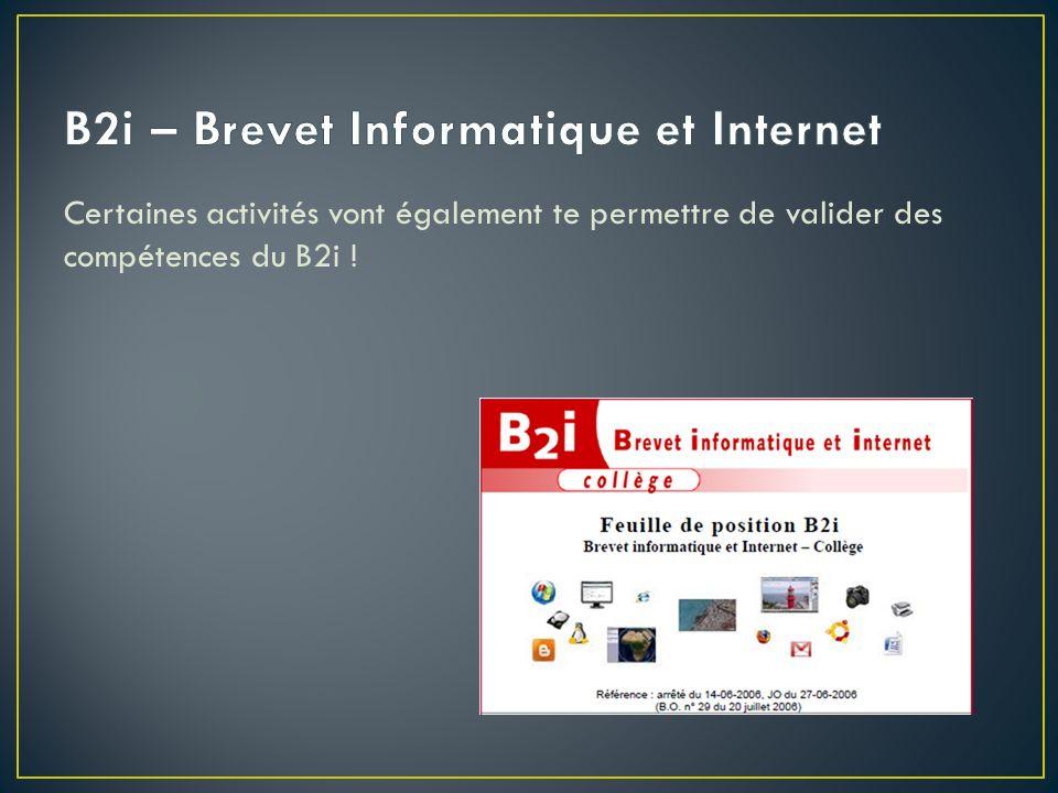 Certaines activités vont également te permettre de valider des compétences du B2i !