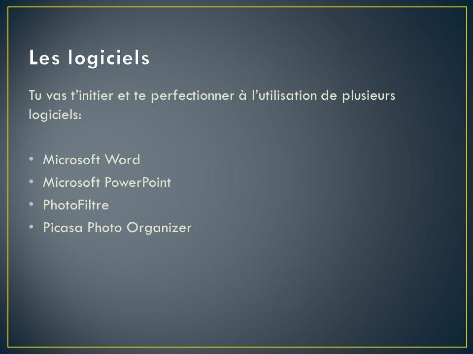 Tu vas tinitier et te perfectionner à lutilisation de plusieurs logiciels: Microsoft Word Microsoft PowerPoint PhotoFiltre Picasa Photo Organizer