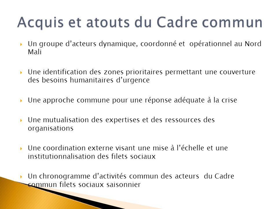 Un groupe dacteurs dynamique, coordonné et opérationnel au Nord Mali Une identification des zones prioritaires permettant une couverture des besoins h