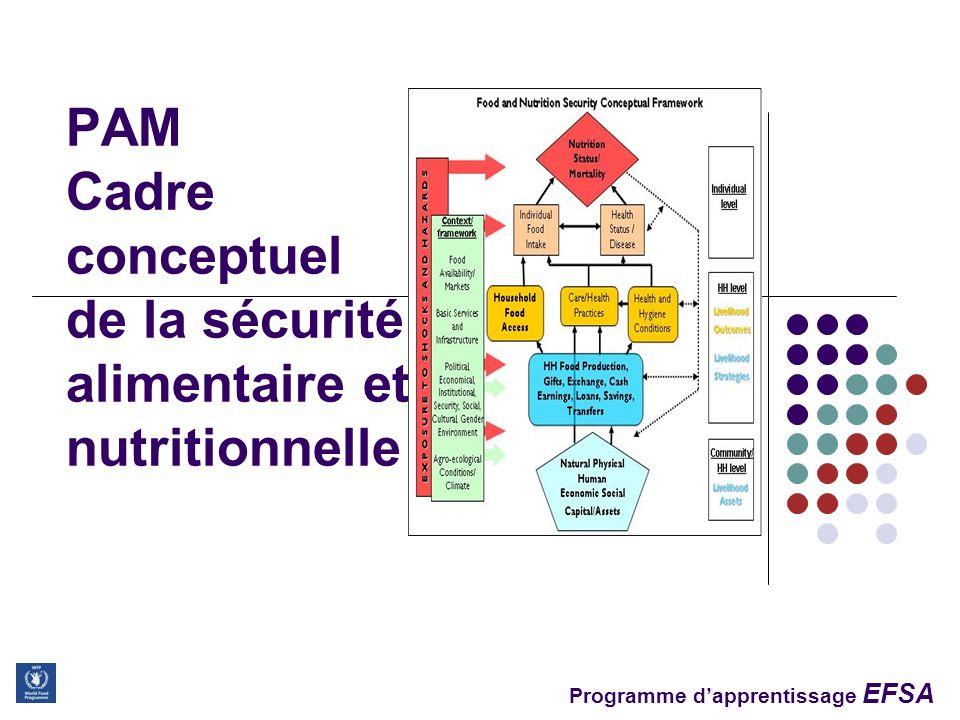 Programme dapprentissage EFSA 2 Objectifs de la session Décrire les concepts clés du cadre conceptuel de la Sécurité Alimentaire et Nutritionnelle du PAM Adapter et appliquer le cadre conceptuel pour identifier les facteur clés qui affectent la SAN dans un contexte donné