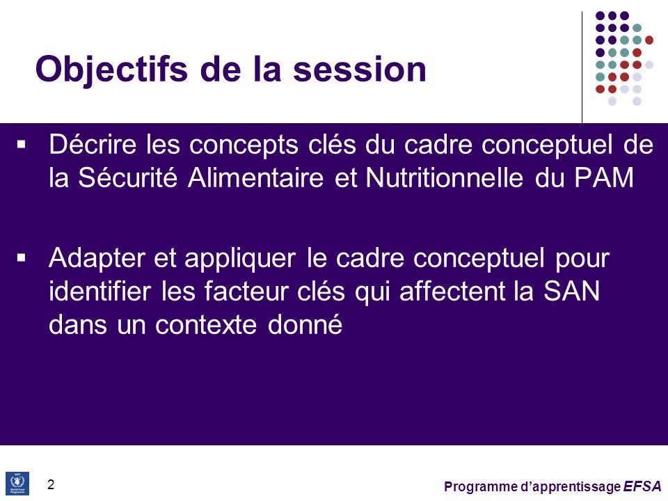 Programme dapprentissage EFSA 23 Exercice 1 – Adaptation du cadre conceptuel Utiliser la feuille de travail pour létude de cas 45 mn + 60 mn discussion