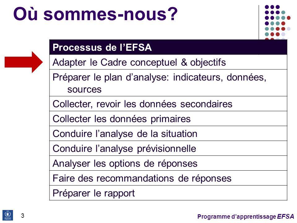 Programme dapprentissage EFSA 4 Cadre conceptuel Oriente la sélection des indicateurs pour lanalyse et pour le ciblage Oriente la collecte et lanalyse des données Considère la disponibilité, laccès et lutilisation des aliments comme déterminants clés de la sécurité alimentaire