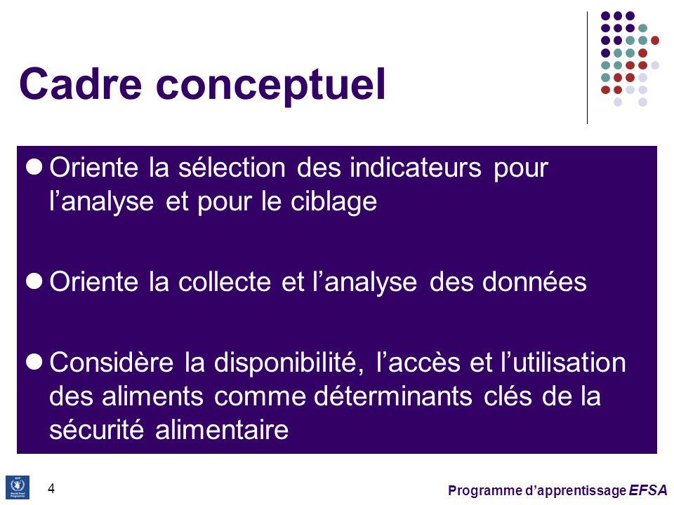 Programme dapprentissage EFSA 5 Cadre conceptuel Fournit: Une base pour développer des hypothèses initiales sur la crise Un moyen de visualiser les relations entre les facteurs qui affectent la sécurité alimentaire et nutritionnelle