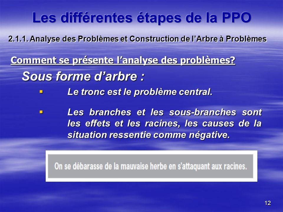 12 Comment se présente lanalyse des problèmes? Sous forme darbre : Le tronc est le problème central. Le tronc est le problème central. Les branches et