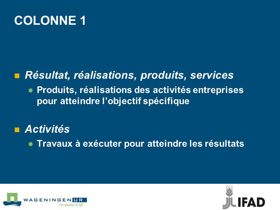 COLONNE 1 Résultat, réalisations, produits, services Produits, réalisations des activités entreprises pour atteindre lobjectif spécifique Activités Travaux à exécuter pour atteindre les résultats