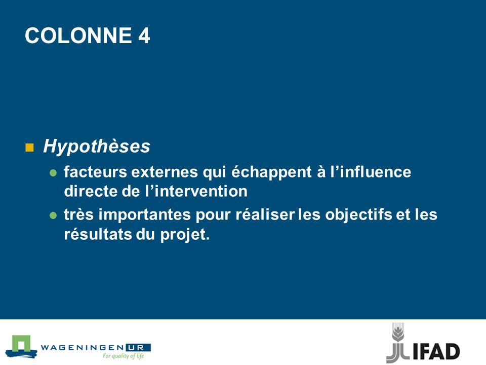 COLONNE 4 Hypothèses facteurs externes qui échappent à linfluence directe de lintervention très importantes pour réaliser les objectifs et les résultats du projet.