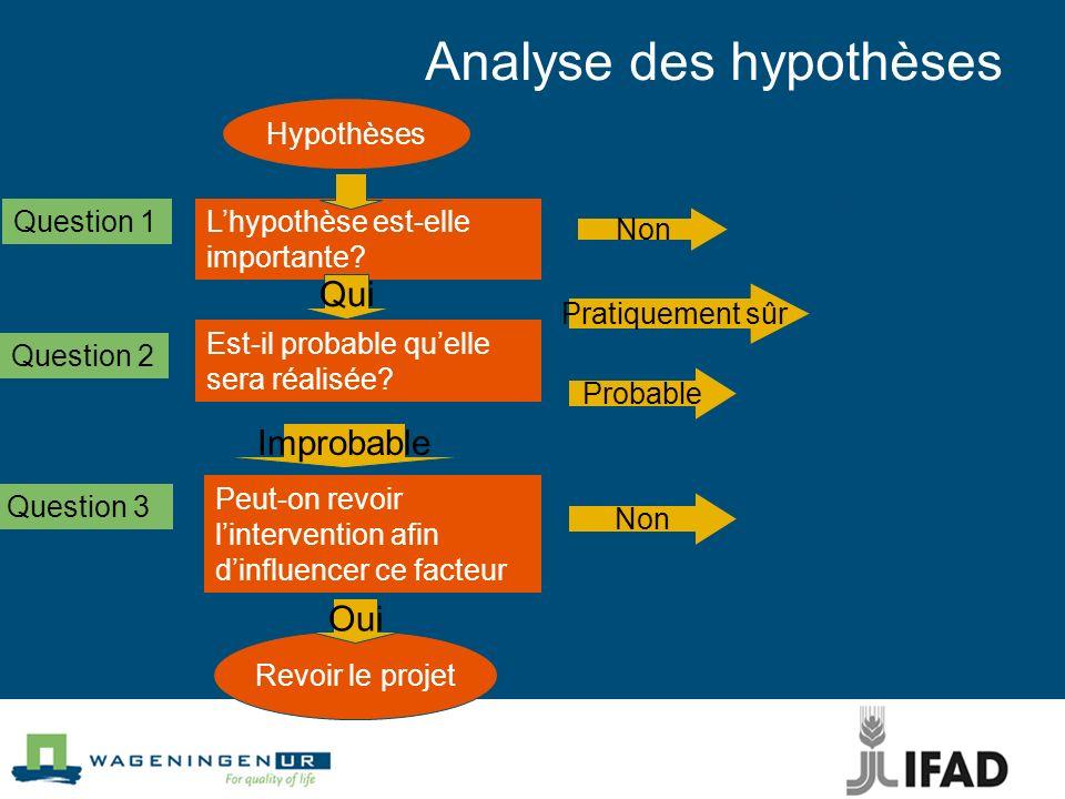 Analyse des hypothèses Hypothèses Lhypothèse est-elle importante.