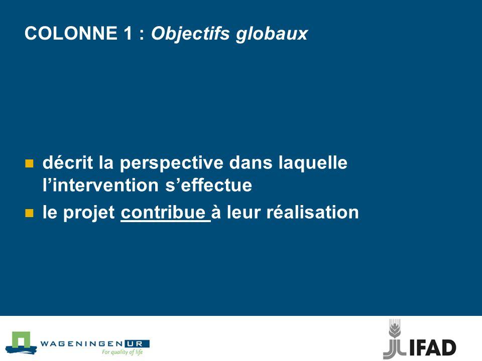 COLONNE 1: Objectif spécifique est réalisé durant lintervention doit persister après lexécution du projet est formulé en termes de bénéfices durables pour le groupe cible est la raison dêtre de lintervention