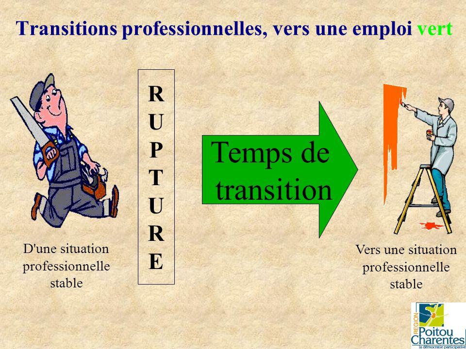 Cause de transition professionnelle : Une rupture Transitions professionnelles, vers une emploi vert Changement de fonction dans l entreprise (même cadre de travail) Changement de lieu d activité dans l entreprise (= mutation, même métier) Licenciement (conventionnel, économique,...) Démission (vers une autre entreprise (même métier ?) (autre cadre d activité))