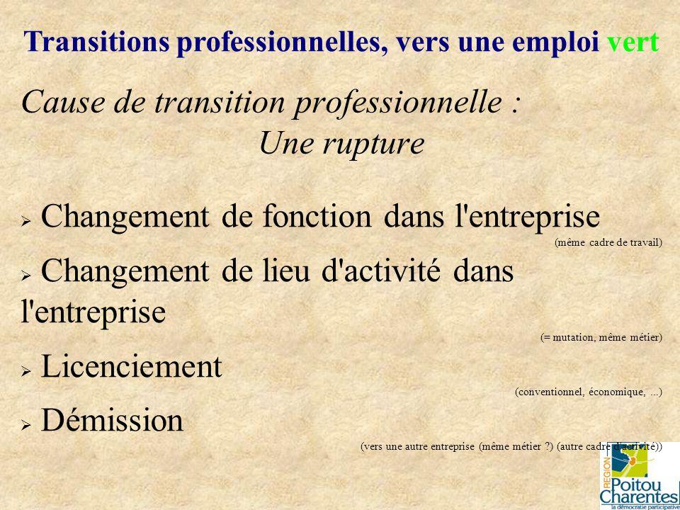 Cause de transition professionnelle : Une rupture Transitions professionnelles, vers une emploi vert Changement culturel dans l entreprise Intégration de la démarche qualité Engagement dans une logique Développement Durable Aspiration à la réalisation de soi