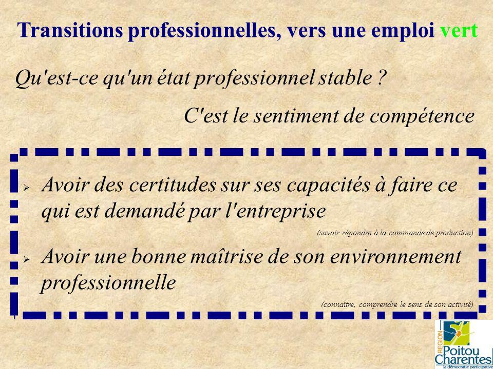 Qu'est-ce qu'un état professionnel stable ? Transitions professionnelles, vers une emploi vert C'est le sentiment de compétence Avoir des certitudes s