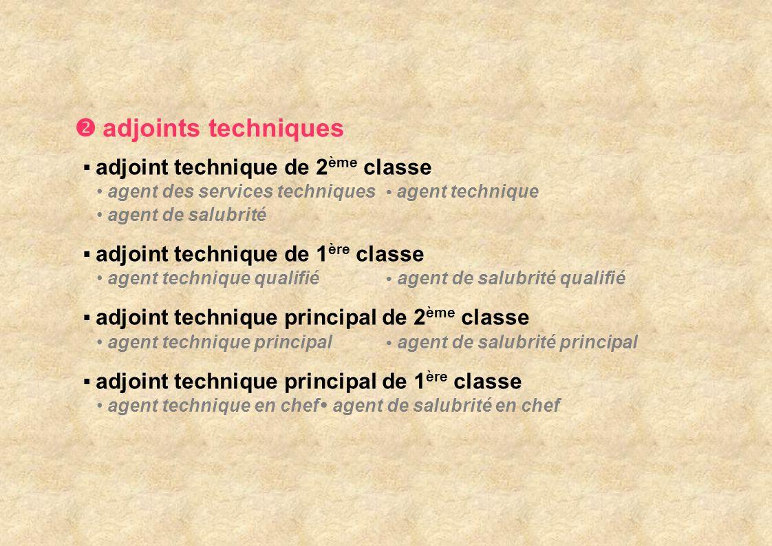 Diverses dispositions relatives à la promotion interne En catégorie C, seul subsiste l accès au grade d agent de maîtrise par promotion interne.
