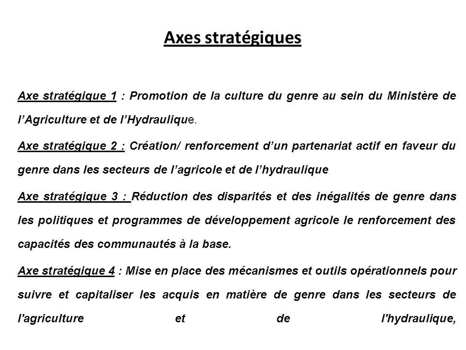 Axes stratégiques Axe stratégique 1 : Promotion de la culture du genre au sein du Ministère de lAgriculture et de lHydraulique. Axe stratégique 2 : Cr