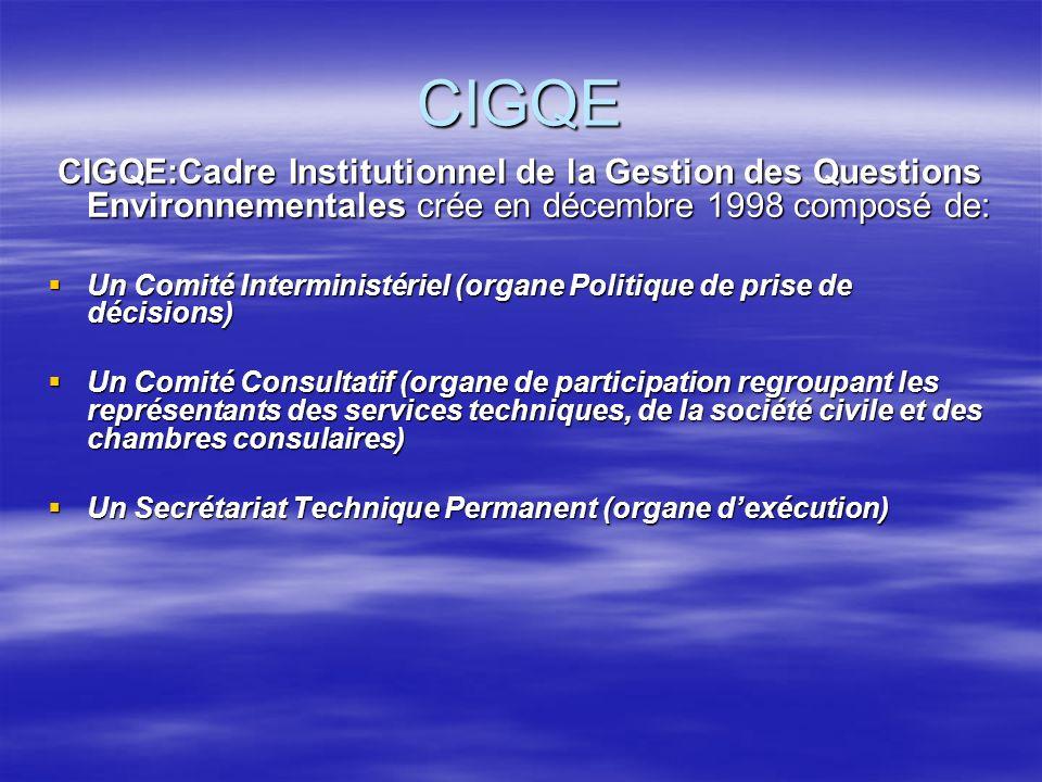 CIGQE CIGQE:Cadre Institutionnel de la Gestion des Questions Environnementales crée en décembre 1998 composé de: CIGQE:Cadre Institutionnel de la Gest