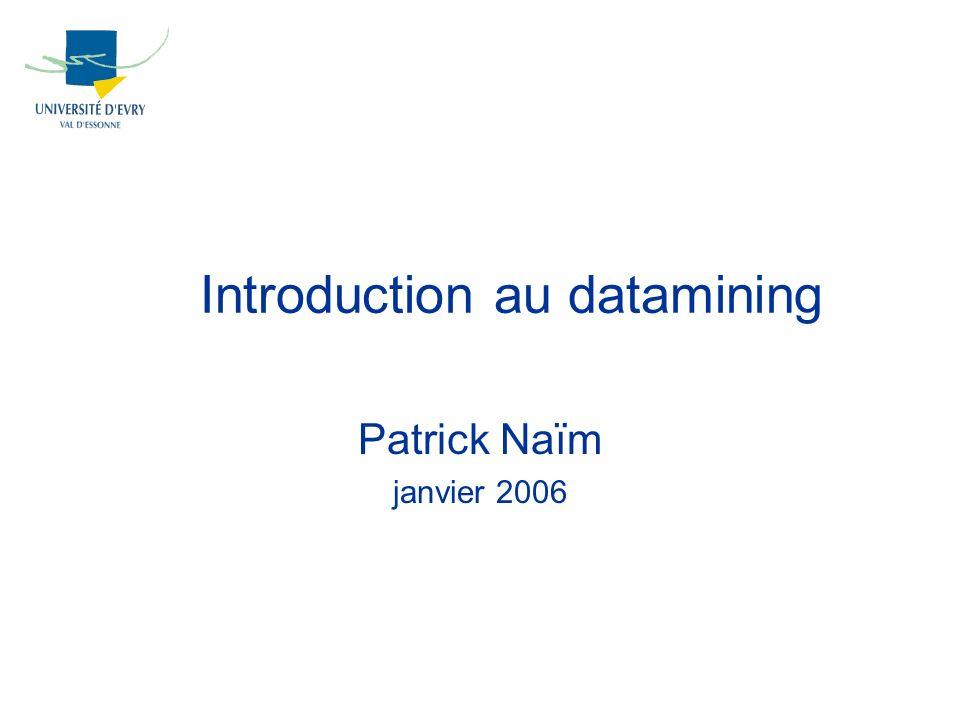 Introduction au datamining Patrick Naïm janvier 2006