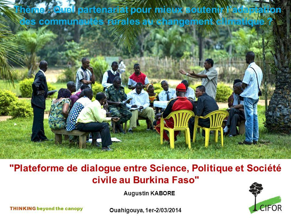 THINKING beyond the canopy Contexte Ladaptation du monde rural au CC avec la mise en œuvre dun Programme dAction National dAdaptation (PANA) à la variabilité et au changement climatique Un Programme dInvestissement Forestier (PIF) financé par la WB et la BAD qui lance le Burkina Faso dans le processus REDD+ (mai 2010) Plan National dAdaptation (PNA) en cours de formulation