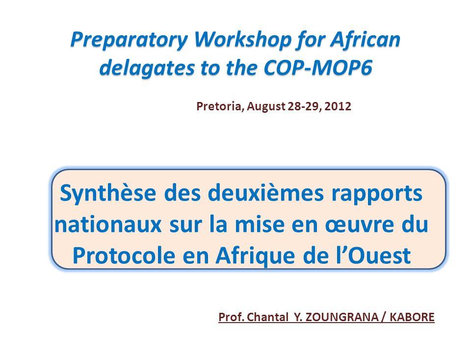 Synthèse des deuxièmes rapports nationaux sur la mise en œuvre du Protocole en Afrique de lOuest Preparatory Workshop for African delagates to the COP-MOP6 Prof.