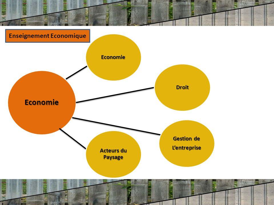 Economie Economie Acteurs du Paysage Gestion de Lentreprise Droit Enseignement Economique
