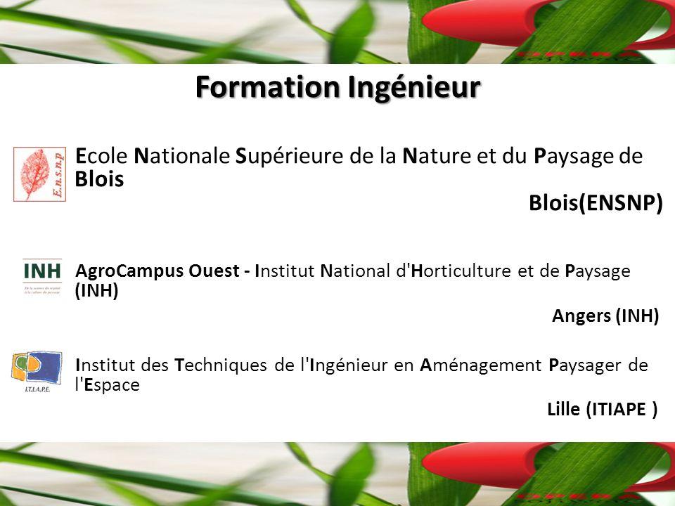 Formation Ingénieur Ecole Nationale Supérieure de la Nature et du Paysage de Blois Blois(ENSNP) AgroCampus Ouest - Institut National d Horticulture et de Paysage (INH) Angers (INH) Institut des Techniques de l Ingénieur en Aménagement Paysager de l Espace Lille (ITIAPE )