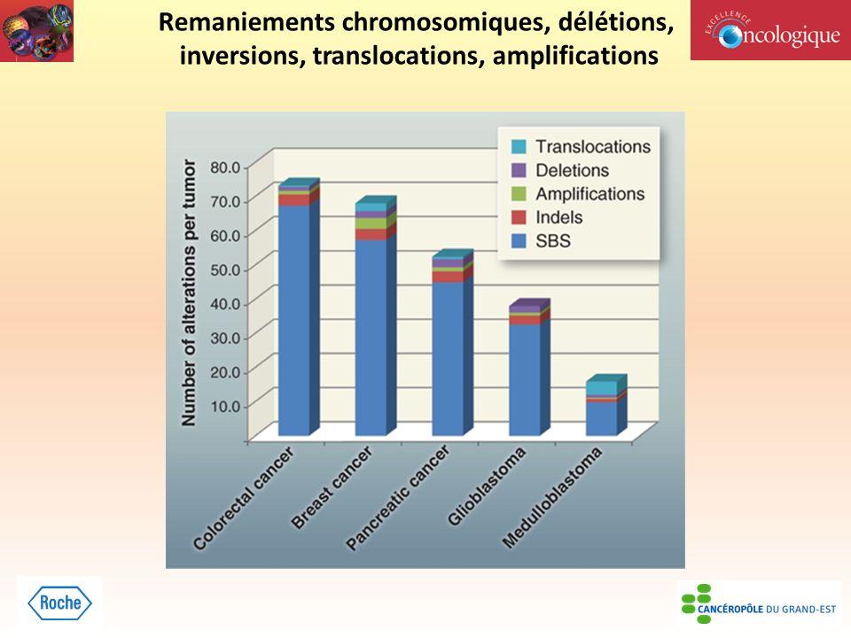 Remaniements chromosomiques, délétions, inversions, translocations, amplifications