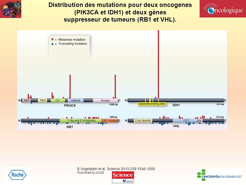 Distribution des mutations pour deux oncogenes (PIK3CA et IDH1) et deux gènes suppresseur de tumeurs (RB1 et VHL). B Vogelstein et al. Science 2013;33