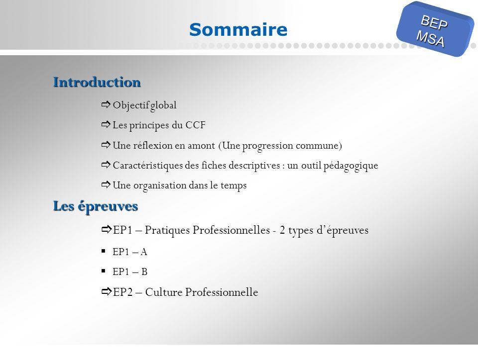 Page 2 Sommaire Introduction Objectif global Les principes du CCF Une réflexion en amont (Une progression commune) Caractéristiques des fiches descrip