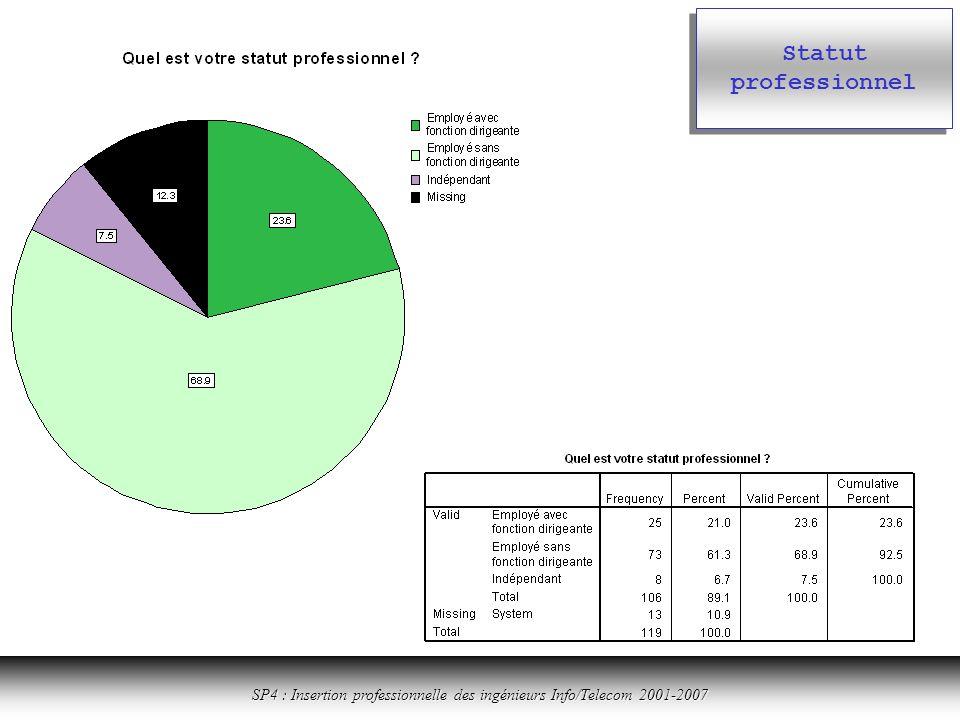 Cliquer ici pour revenir à la table des matières SP4 : Insertion professionnelle des ingénieurs Info/Telecom 2001-2007 Statut professionnel
