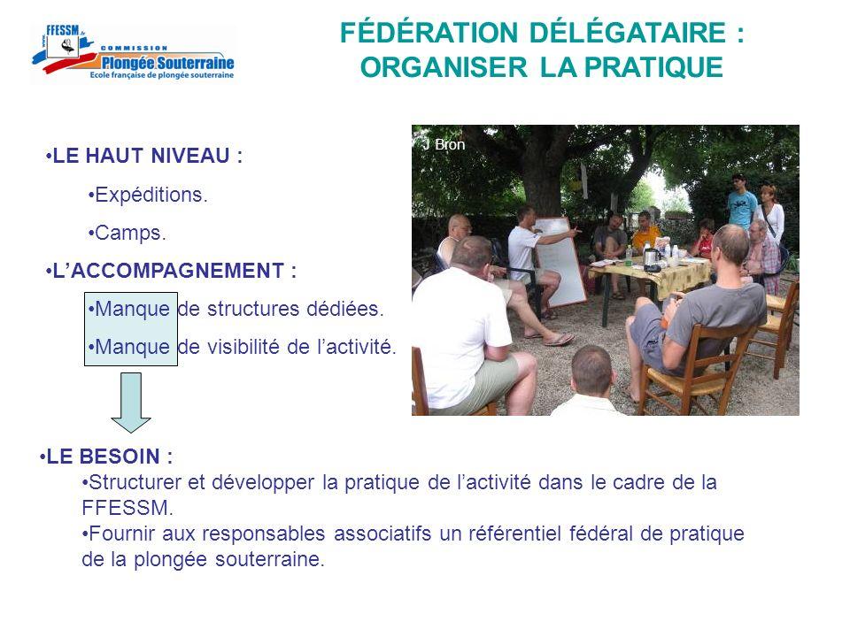 LES BREVETS : LA FABRICATION DÉCISION CNPS : Juin 2008.