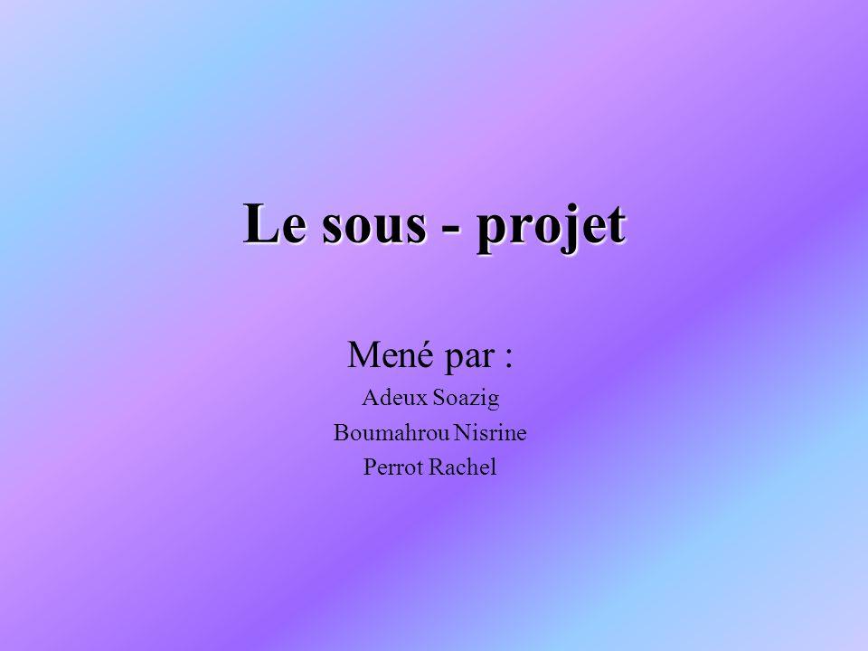 Le sous - projet Mené par : Adeux Soazig Boumahrou Nisrine Perrot Rachel