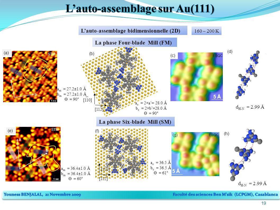19 Lauto-assemblage bidimensionnelle (2D) La phase Six-blade Mill (SM) (e) STM a m = 36.4±1.0 Å b m = 36.4±1.0 Å Θ = 60° 5 Å (g) ESQC (f) [110] [112] _ _ a c = 36.5 Å b c = 36.5 Å Θ = 61° d H-N = 2.99 Å (h) 160 – 200 K (a) STM a m = 27.2±1.0 Å b m = 27.2±1.0 Å Θ = 90° 5 Å (c) ESQC d H-N = 2.99 Å (d) [110] [112] _ _ (b) a c = 2×a= 28.0 Å b c = 2×b=28.0 Å Θ = 90° La phase Four-blade Mill (FM)