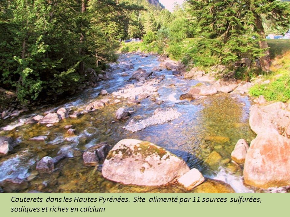 Lons le Saunier dans le Jura : alimentée par 3 sources minéralisées.