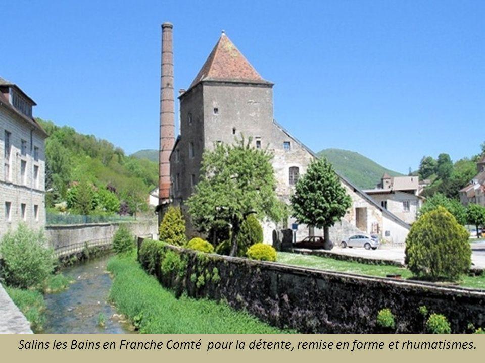 Salies de Béarn dans les Pyrénées Orientales depuis le 11° siècle. Eaux riches en sels.