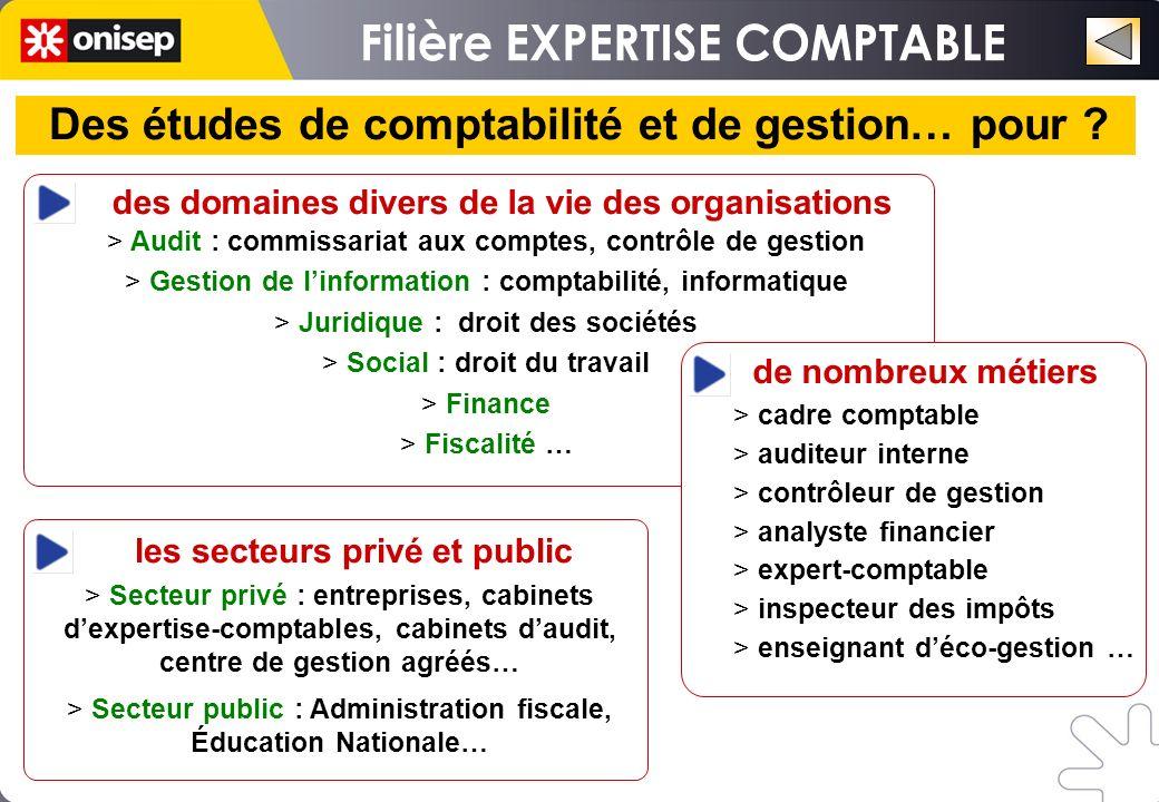 des domaines divers de la vie des organisations > Audit : commissariat aux comptes, contrôle de gestion > Gestion de linformation : comptabilité, info