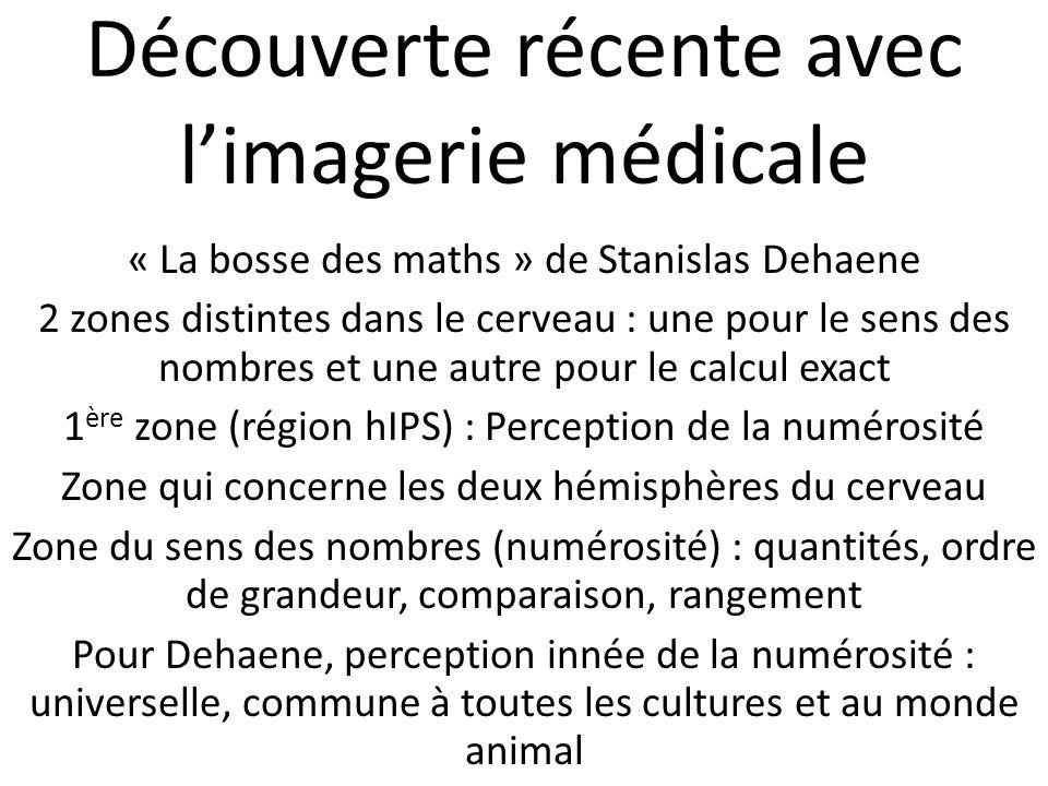 Découverte récente avec limagerie médicale « La bosse des maths » de Stanislas Dehaene 2 zones distintes dans le cerveau : une pour le sens des nombre