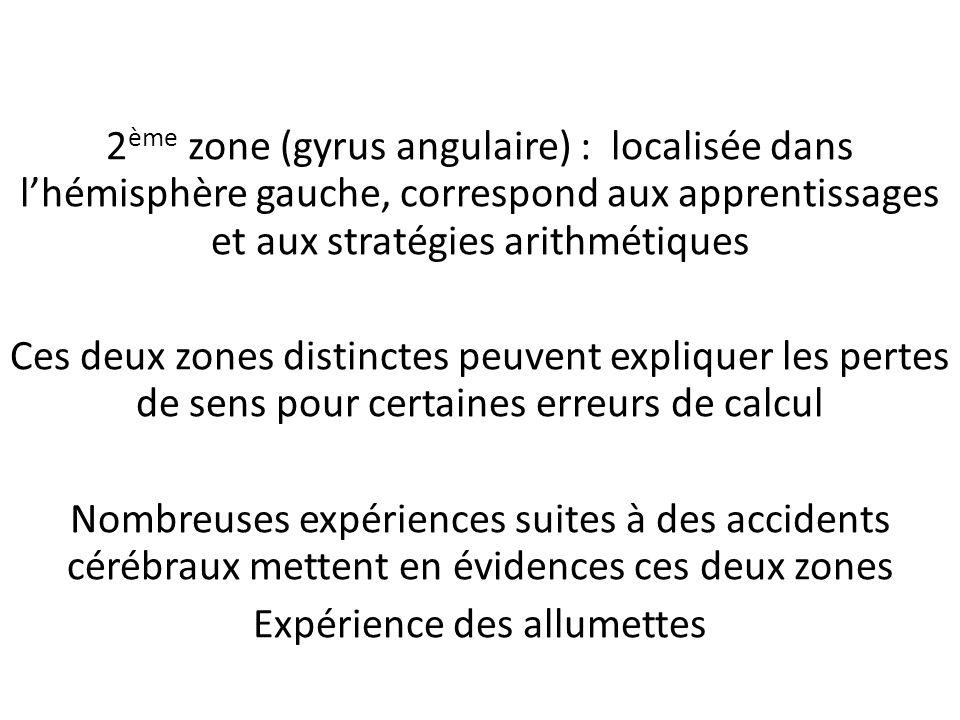 2 ème zone (gyrus angulaire) : localisée dans lhémisphère gauche, correspond aux apprentissages et aux stratégies arithmétiques Ces deux zones distinc