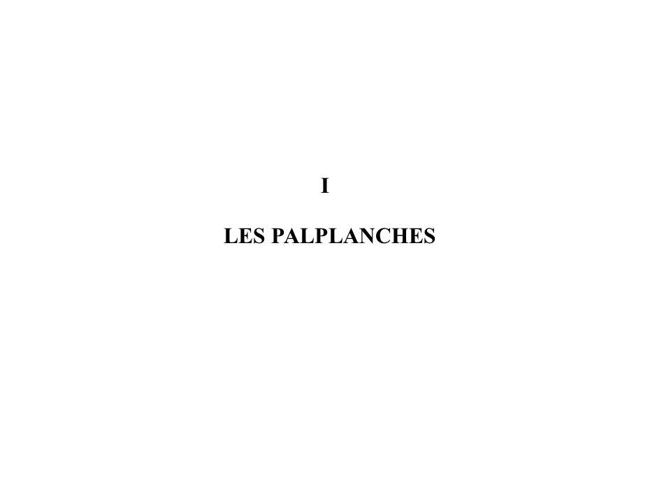 LES PALPLANCHES I