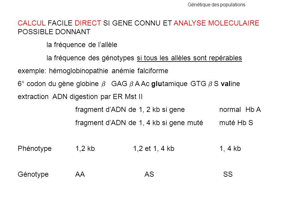Génétique des populations CALCUL FACILE DIRECT SI GENE CONNU ET ANALYSE MOLECULAIRE POSSIBLE DONNANT la fréquence de lallèle la fréquence des génotype