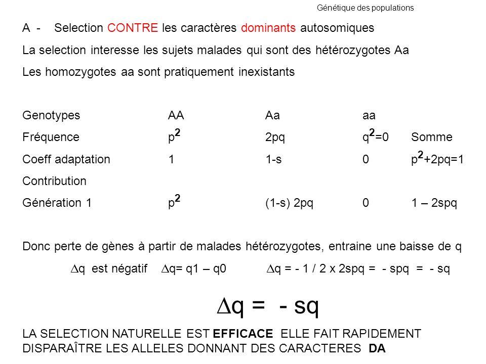 Génétique des populations A - Selection CONTRE les caractères dominants autosomiques La selection interesse les sujets malades qui sont des hétérozygo