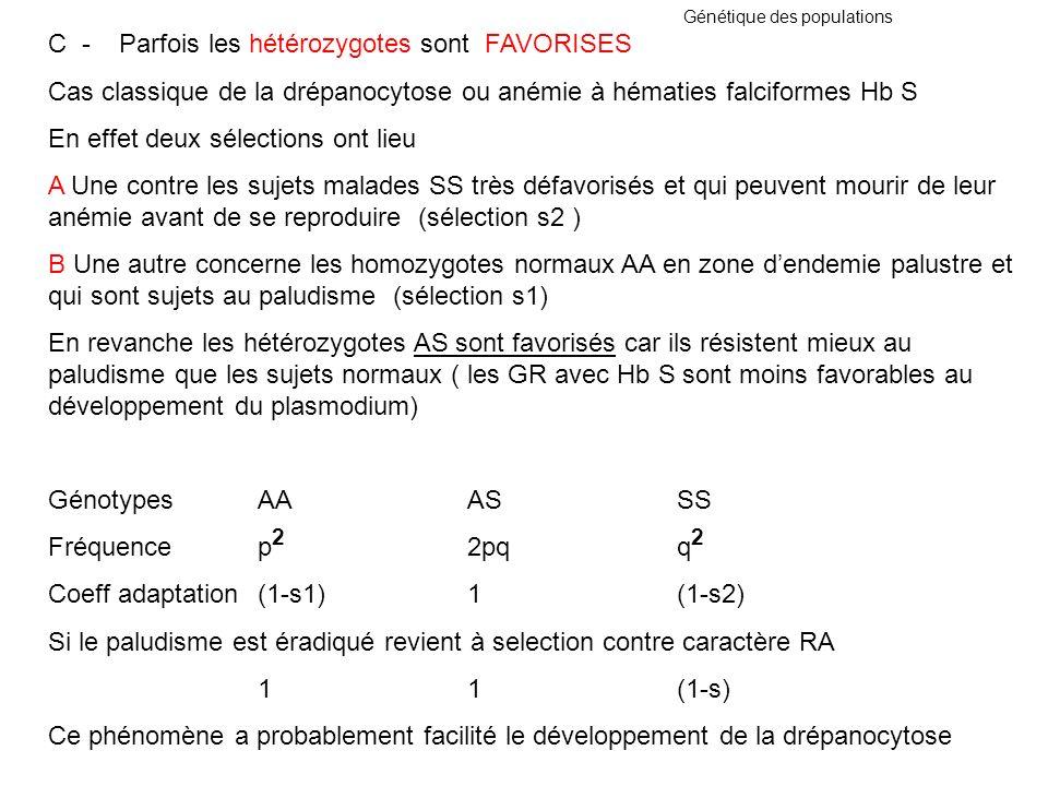 Génétique des populations C - Parfois les hétérozygotes sont FAVORISES Cas classique de la drépanocytose ou anémie à hématies falciformes Hb S En effe