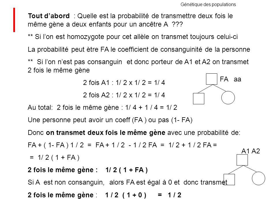 Génétique des populations Tout dabord : Quelle est la probabilité de transmettre deux fois le même gène a deux enfants pour un ancêtre A ??? ** Si lon