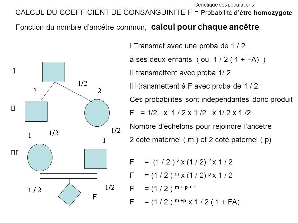 Génétique des populations CALCUL DU COEFFICIENT DE CONSANGUINITE F = Probabilité dètre homozygote Fonction du nombre dancêtre commun, calcul pour chaq