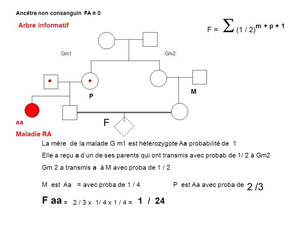 F F = (1 / 2) m + p + 1 Ancêtre non consanguin FA = 0 Arbre informatif aa Maladie RA La mère de la malade G m1 est hétérozygote Aa probabilité de 1 El