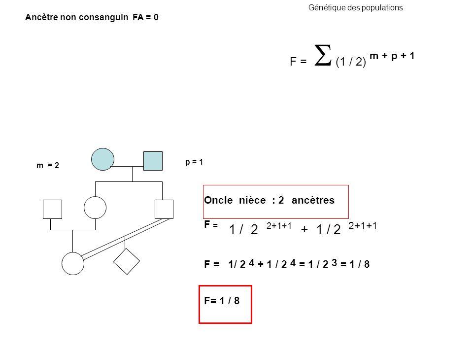 Génétique des populations Oncle nièce : 2 ancètres F = 1 / 2 2+1+1 + 1 / 2 2+1+1 F = 1/ 2 4 + 1 / 2 4 = 1 / 2 3 = 1 / 8 F= 1 / 8 m = 2 p = 1 F = (1 /