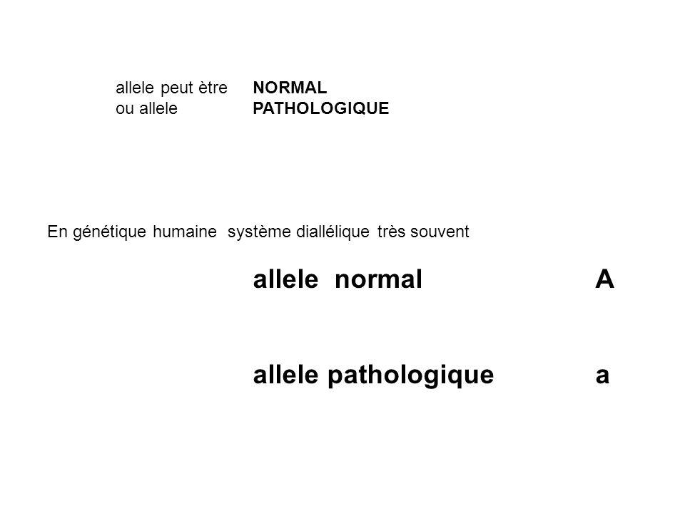 allele peut ètre NORMAL ou allele PATHOLOGIQUE En génétique humaine système diallélique très souvent allele normal A allele pathologique a